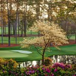 """""""@TheMasters: 7 days until the Masters #cominginapril #themasters http://t.co/clvLgVeVbn""""😍😍😍"""