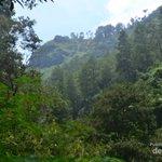 Ada Air Terjun Secantik Ini di Kawasan Dago Atas, Bandung http://t.co/OVbXq5NRaM via @detiktravel http://t.co/aibDF9uQMc