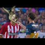 Una falta total de respeto de Osvaldo a Desábato. Le dió el pastito.. ¿Y el agua? http://t.co/NLnSneGkgj