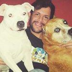 #NoEntiendo a la gente que no Ama a los Perros!!! http://t.co/1rYe9JNSuE