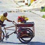 """#FotoDelDía por José Beytia: """"Adulto Trabajando"""". http://t.co/hcImht8lIl"""