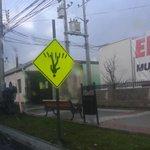 Ya que el mundo esta patas pa arriba andemos todos de cabeza #puq #magallenes calle colon! Xd http://t.co/IwLvBlQvFr
