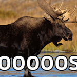 Dorsett with a breakaway but Moose. #OurBlues http://t.co/a6ckFZcPkB