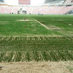 Sports Hub rejects Lions coach Bernd Stange's comment on National Stadium's pitch http://t.co/koTiCaZuu7 @todayonline http://t.co/OvfyMZTxSK
