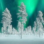 v @Cynthiapoet: Northern Lights In #Sweden by Kevin McNeal #Breathtaking. #Awesome. http://t.co/bS7y33mOIF
