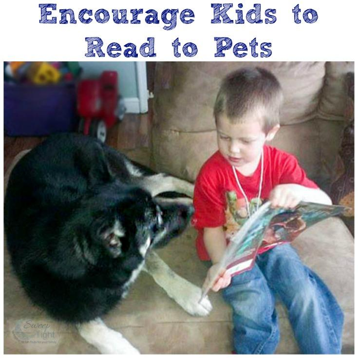 The Dollar General - Save Money and Save Literacy @Purina @DollarGeneral #ad http://t.co/bQNtrK5qv3 http://t.co/sqcOaAjd62