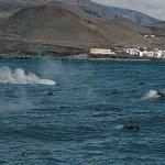 El volcán «Hijo de Tenerife» sacude el mar con más de 25 terremotos en tres meses http://t.co/Iwdepridue http://t.co/5mdLzx8zMI