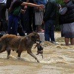 Esta foto NUNCA FUE TOMADA EN ATACAMA! Las 7 HISTORIAS FALSAS del aluvión en redes sociales, AHORA en #Bienvenidos13… http://t.co/WQKDoRw8co
