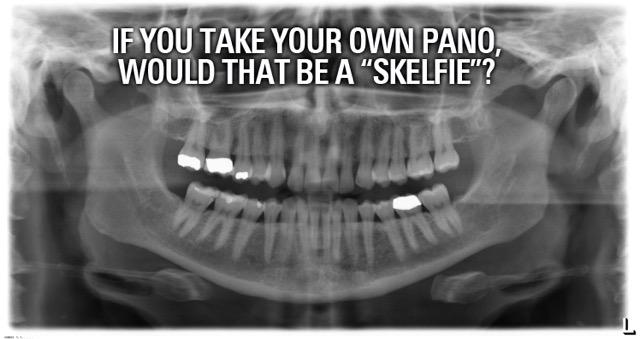"If you take your own pano, would that be a ""skelfie""? http://t.co/vvSk7LJ5Vk"