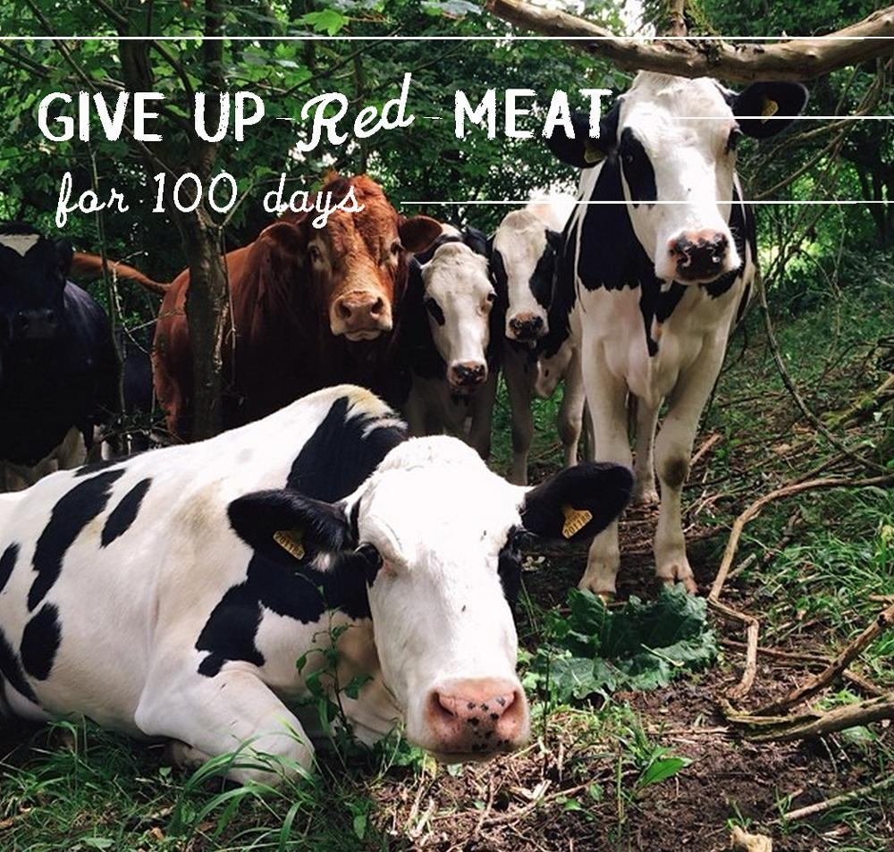 Act 1 - Give Up Red Meat for 100 Days. 80% of deforested Amazon is bc of cattle. Let's change that. #100StartsWith1 http://t.co/6sMyAeimqn