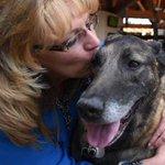 Social media buzz helps reunite retired war dog, owner http://t.co/R7O8OQjml8 via @jerileebennett #Afghanistan http://t.co/hKCgmon2Mo