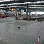 Hauptbahnhof München: Eine Taube trotzt der Gefahr #Niklas http://t.co/ZNl1jLuDzH