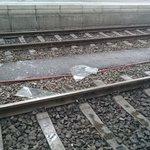 Hauptbahnhof München: Eine der Glasscheiben aus dem dach ist auf Gleis 25 geknallt.. http://t.co/63S6g2cw10