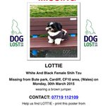 RT & help @lewisbowen16 #findlottie. Possible sighting #Techniquest #Cardiff Bay last night at 5pm http://t.co/JrOI9OzfO6 PLS look out 4 her