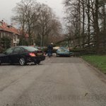 Boom op auto aan Muntweg bij Goffertpark. Storm blijft ellende veroorzaken #DG Nijmegen http://t.co/J3EymSFgYw