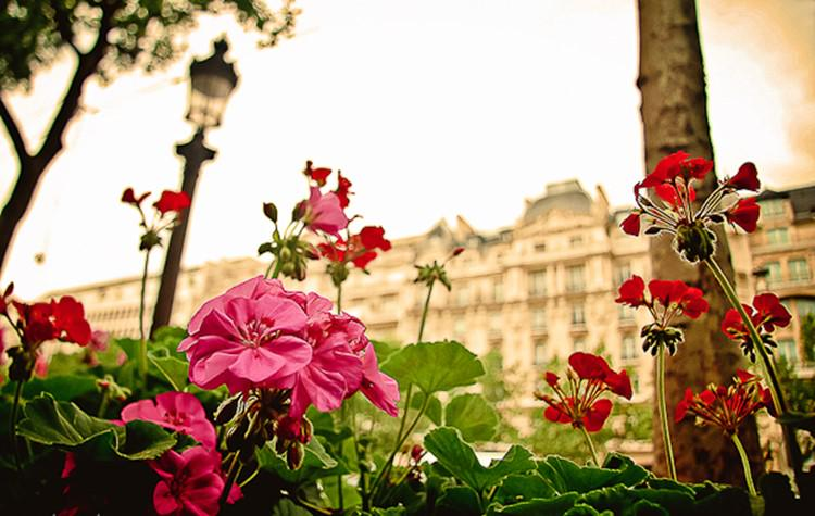 A2: Like many others, we have a love affair with #Paris in the springtime! #TL_Chat #BringOnSpring http://t.co/tXd1pI54Kk