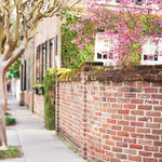 A9 #Charleston has the Festival of Homes & Gardens @HistoricChas + @SpoletoFestival #TL_Chat #BringonSpring http://t.co/fumsZBWTOD