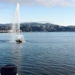 Morning office shot after school drop off #Wellington http://t.co/0y4aAnEEgZ