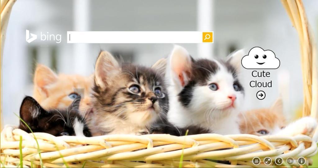 春、Bingの新機能がスタート!世界中のかわいいをクラウドコンピューティングで検索するBing Cute Cloud誕生!こちらで機能と魅力を大紹介!http://t.co/u4GdIrFvvN #BingJP http://t.co/iOfoT1wHvR