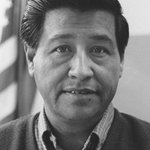 What is closed today in #Phoenix and #Tempe for #CesarChavez Day: http://t.co/sOj8uqdceL http://t.co/3ZPNxFII7z