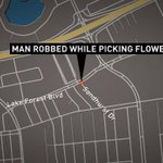 NOPD: Man robbed while picking flowers http://t.co/6bIEsykubQ http://t.co/nYxMrEgfQA