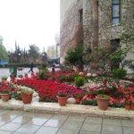 """أمطار الخير في الأول من #نيسان الذي قالت عنه الأمثال الشعبية """"شتوة نيسان بتحيي الانسان""""، أهلا بالمطر :-) #عمان #رؤيا http://t.co/bpF6Nwwz2Y"""
