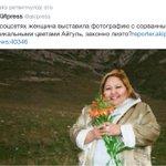 """Кыргызская """"Павел Тё"""" в женском обличьи! Акипресс предлагает ее тоже найти? 😊 http://t.co/dzCfYODW3I"""