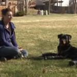 #Video Un perro vuelve a caminar con 4 prótesis en sus patas que le fueron amputadas http://t.co/Q5mi6WiXTB http://t.co/0hvFEPBv6M