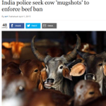 Uqab: Indian Police  have asked cow owners to provide pics of their cows to help enforce the  BAN on BEEF! Jinnah: :) http://t.co/30RHUsIzTF