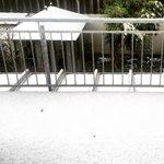 München. 1. April. Der Schnee liegt. http://t.co/EGOlgk6S9Q