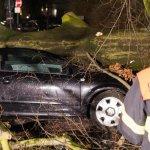 "Sturmtief: Mindestens neun Tote durch Orkan ""Niklas"" http://t.co/jkzhVg4Rrx http://t.co/CD6XHYtTrk"