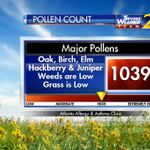 Pollen count is high for trees today. It is low for weeds and grass. #wsbtv http://t.co/1o6ASyN1Kr