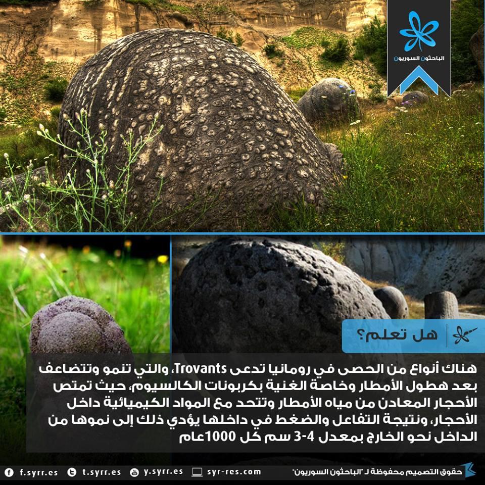 #هل_تعلم الأحجار التي تنمو! http://t.co/L8y733L2EQ