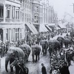 This is what Christchurch Road in #Boscombe once looked like in 1901, more pix here http://t.co/pdHthtdhEo http://t.co/JqKzAHUmza