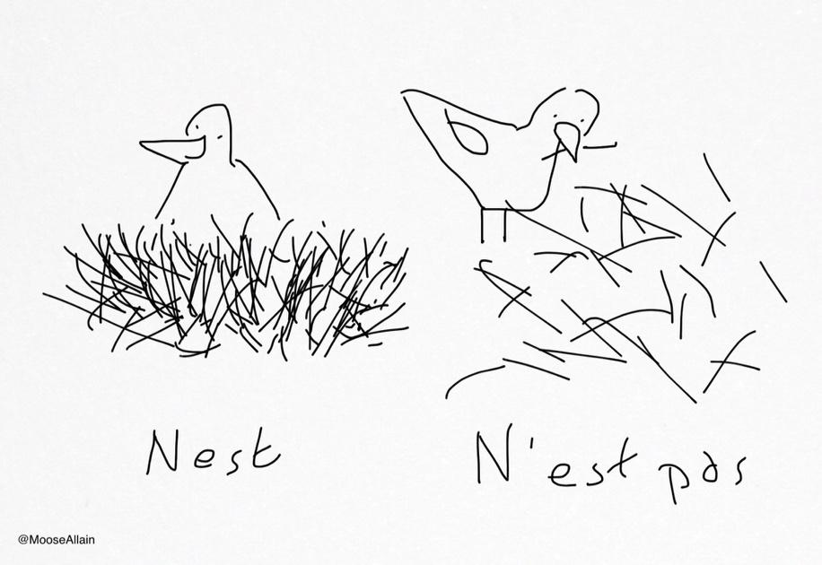 Nest. http://t.co/x5iv11QEjW