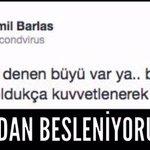 """#CinnetVatanımTÜRKİYE """"Sonuçlara bakarak sebeplere ulaşılabilir"""" M kaynak Yandaş @secondvirus kan bizi besler diyor! http://t.co/oX6wfsnt81"""