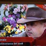 Coltivo tulipani neri #chilhavisto http://t.co/IpjlRrN4ci
