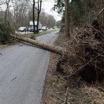 Storm kills at least nine in central Europe http://t.co/UllWC9SHaw http://t.co/VqkP9GOTXb