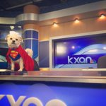 Look whos flying into the 6pm @KXAN_News! Its a bird, its a plane, no, its #SuperKaxan! @KXAN_Weather #Austin http://t.co/Y97767msTu