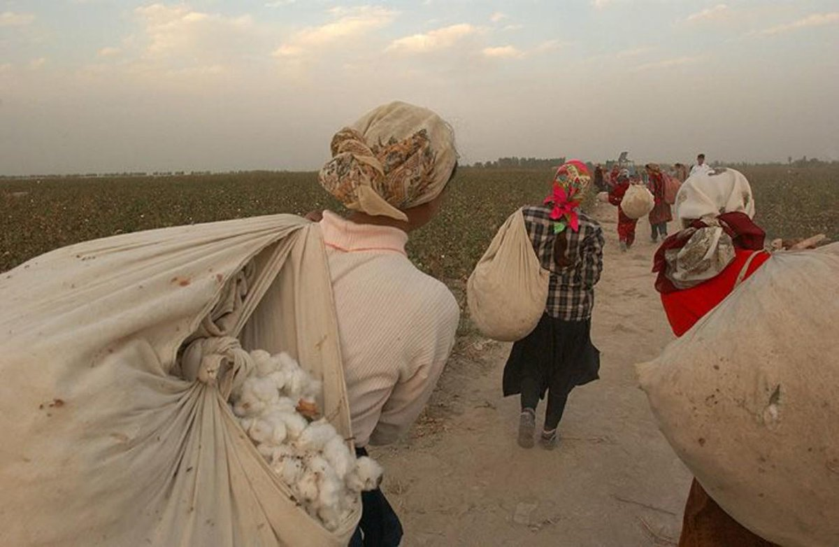 prostitutsii-v-uzbekistane