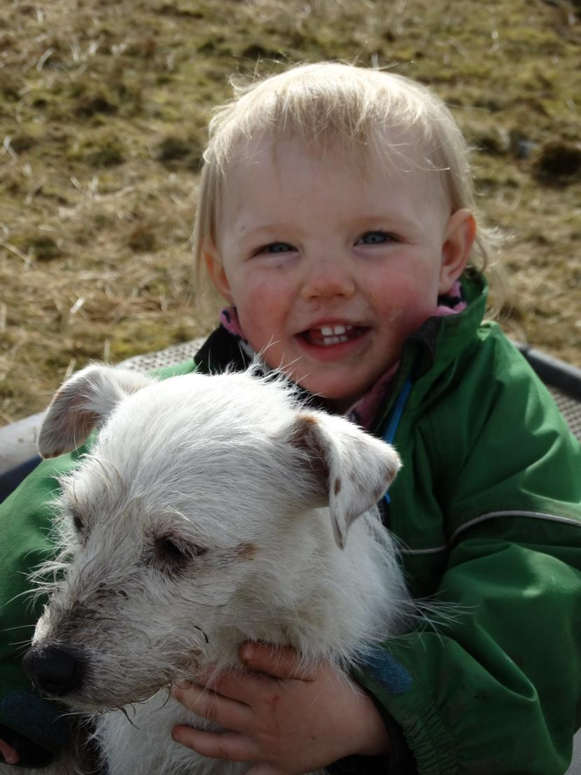Happy though.😀 One woman & her dog. 👶🐶 http://t.co/t0b0hdBLPs