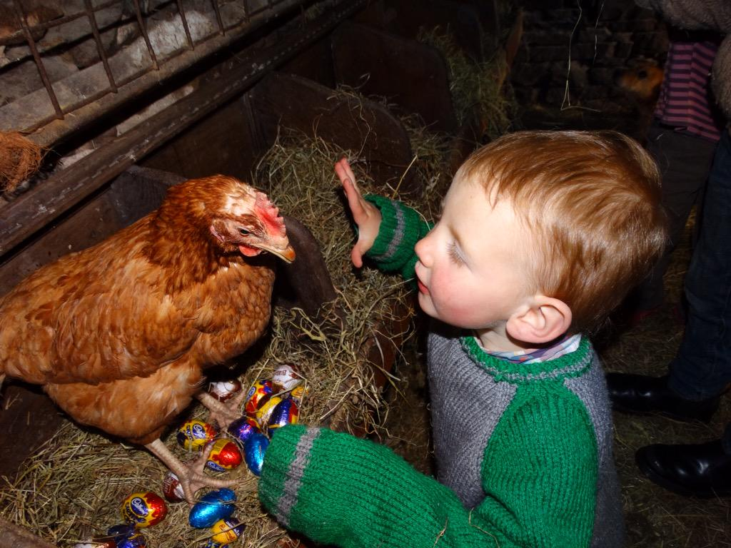 There is a long standing tradition at Ravenseat. Miraculously, on Easter Sunday our chickens lay chocolate eggs. 🐣 http://t.co/LJCtvNWXQi