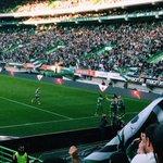Nunca desistam de nós, porque nós nunca vamos desistir de vocês. @Sporting_CP #DiaDeSporting #OndaVerde http://t.co/yA1IvCp39S