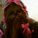 Chewie looked v. refreshed in that #StarWars teaser. Maybe he had help from Galactic Groomers? http://t.co/NcjbSi1ks1 http://t.co/iloFf0gHTu