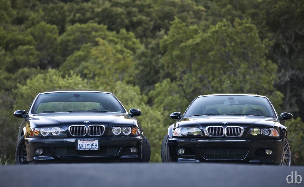 RT @idriveexotic: #BMW E46 M3 vs E39 M5 by David Bush http://t.co/16CVrRHwe2