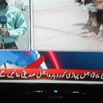 Wow so much pain for #Karachi Pls ask ur relatives to stop using aliases on #MQM workers #NA246BelogsToMQM #Pakistan http://t.co/Hzqr3KkHs7