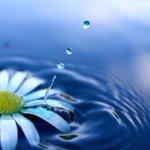 Bismillah yeni güne bakalım hayat daha neler göstecek nelere şahit olacam kimbilir..Günaydın Güzel İnsanlar Dua ile http://t.co/KuZdFvCaoq