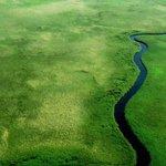 New @BBCWorld travelogue on #Botswana is worth watching. https://t.co/3PgXfW9ZYb http://t.co/3gefygj3sV