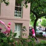 #Applause MT @ZeiglerHouseInn: Inns hot #PINK #photo spot! | @SusanGKomen #Savannah #GA race route! #breastcancer http://t.co/kEmQkbpT90