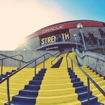 All gold everything, even the path leading to #WarriorsGround. Must be playoff time. #StrengthInNumbers http://t.co/Iu8dBEJX3v
